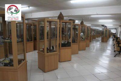 موزه ژئوپارک قشم چه نوع موزه ای است؟