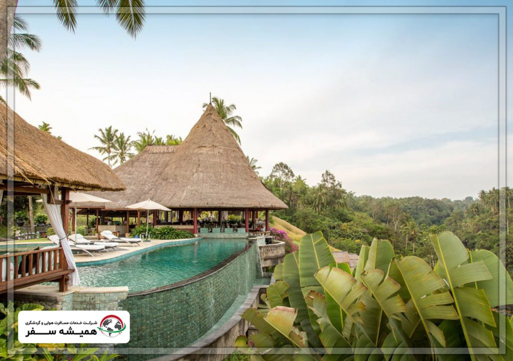 همه چیز درباره بالی