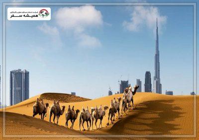 فرهنگ امارات
